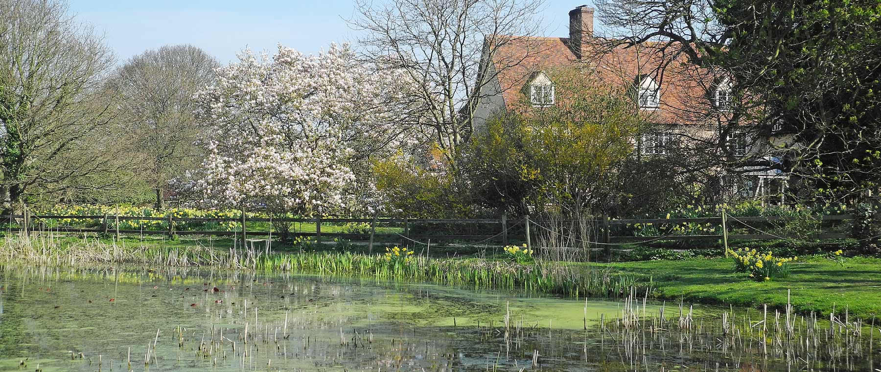 Dedham Hall and Pond
